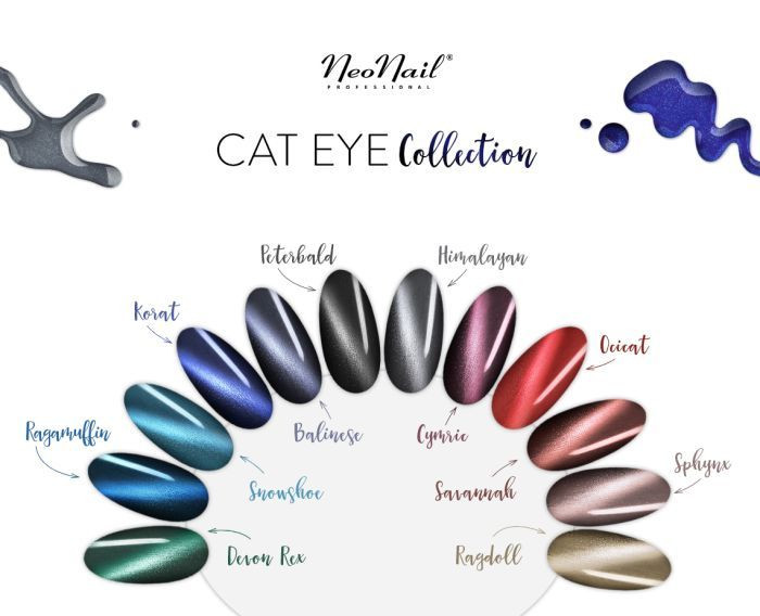COLLECTION MAGNETIC CAT EYE